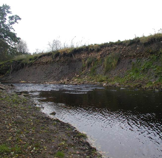 Bank Erosion on Allendale Town Beat