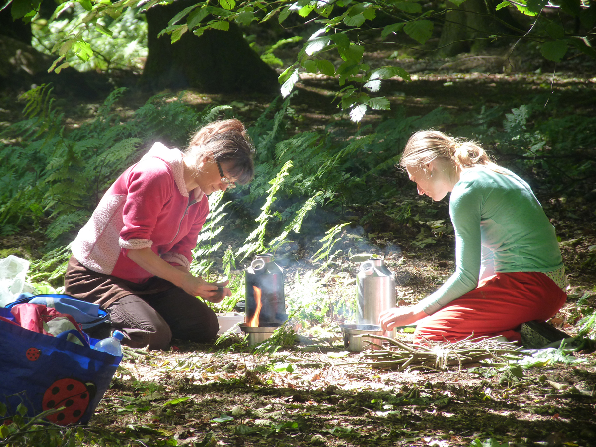 Faeries working in the forest
