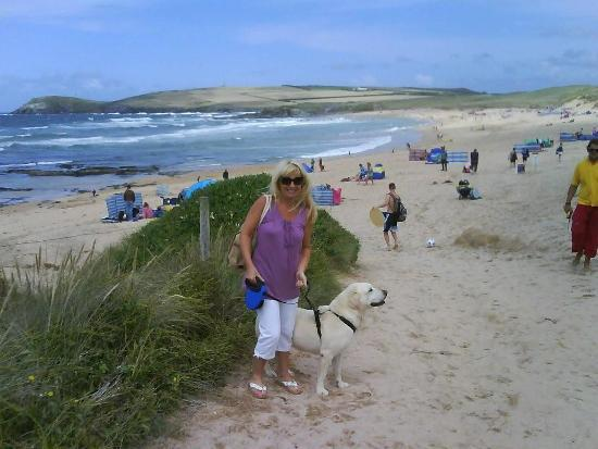 cornwall pet sitters