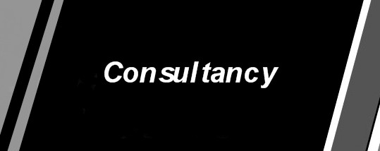 Consultancy Page